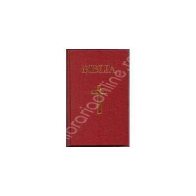 Biblia cu coperta cartonata pe culoarea neagra, aurita (50833)