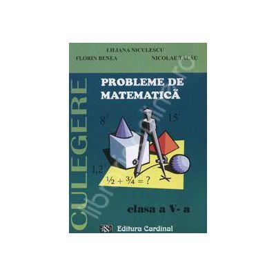 Probleme de matematica. Culegere, clasa a V-a