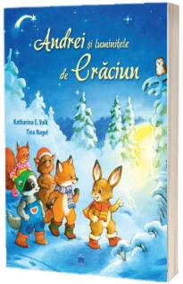 Andrei si luminitele de Craciun - Editie ilustrata
