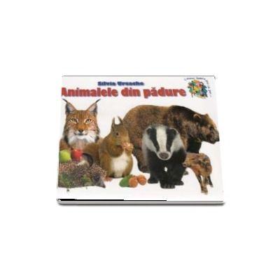 Animale din padure - Silvia Ursache (Colectia Cunosc lumea pas cu pas...)