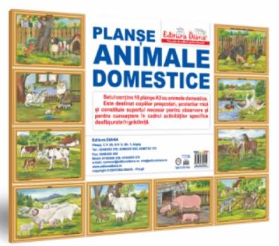 Animale domestice. Set 10 planse