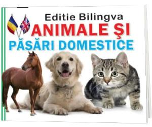 Animale si pasari domestice. Editie bilingva romana-engleza