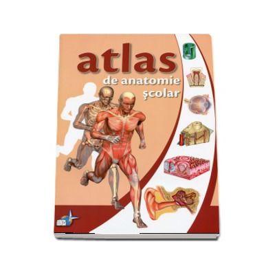 Atlas de anatomie, scolar. Anatomia omului