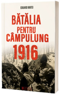 Batalia pentru Campulung 1916
