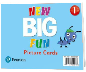 Big Fun Refresh Level 1. Picture Cards