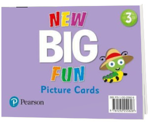 Big Fun Refresh Level 3. Picture Cards