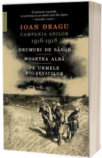 Campania anilor 1916-1918