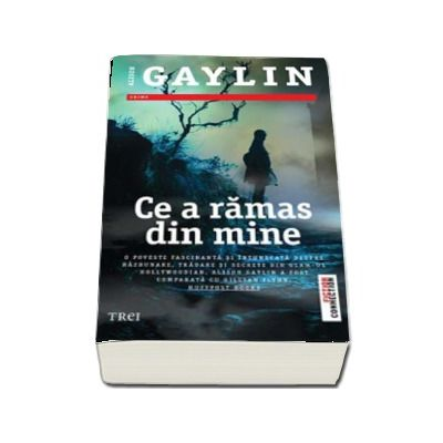 Ce a ramas din mine - Alison Gaylin