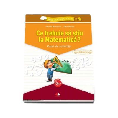 Ce trebuie sa stiu la Matematica? Caiet de activitati - Gabriela Barbulescu