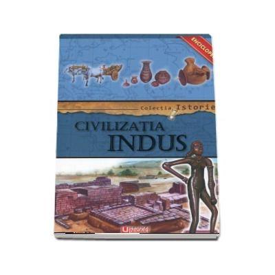 Civilizatia Indus
