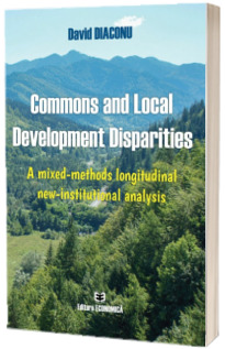 Commons and Local Development Disparities