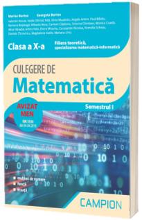 Culegere de matematica, clasa a X-a - Filiera teoretica, specializarea matematica-informatica - Semestrul I