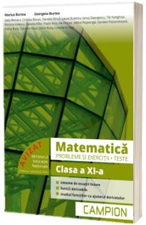 Culegere de matematica, clasa a XI-a. Probleme si exercitii, teste - Profilul tehnic. Semestrul II