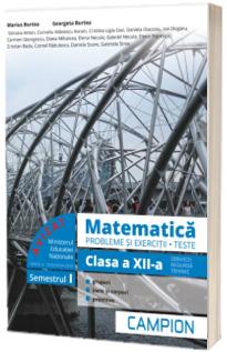 Culegere de matematica, clasa a XII-a. Probleme si exercitii, teste - Profilul tehnic. Semestrul I