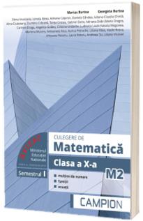 Culegere de matematica pentru clasa a X-a. Semestrul I, M2