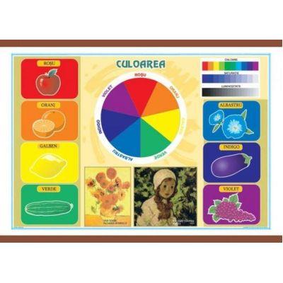 Culoarea - Materiale plastice. Plansa murala