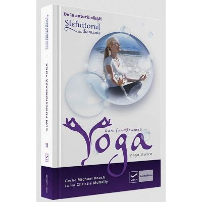 Cum functioneaza Yoga - Geshe Michael Roach