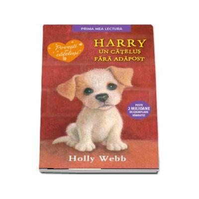 Harry, un catelus fara adapost - Holly Webb