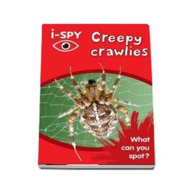 I-SPY. Creepy crawlies, What can you spot?