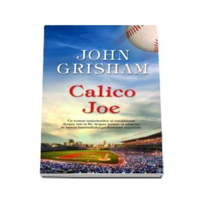 John Grisham, Calico Joe