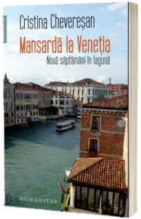 Mansarda la Venetia