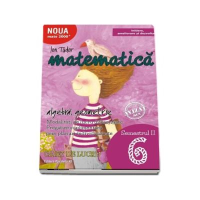 Matematica 2000. Algebra, geometrie. Caiet de lucru, pentru clasa a VI-a. Semestrul al II-lea (Initiere, ameliorare si dezvoltare)