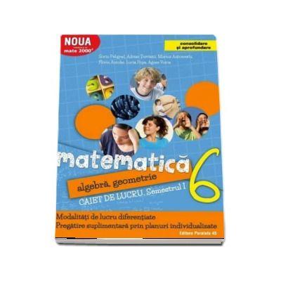 Matematica 2000. Algebra, geometrie. Caiet de lucru, pentru clasa a VI-a. Semestrul I (Consolidare si aprofundare)