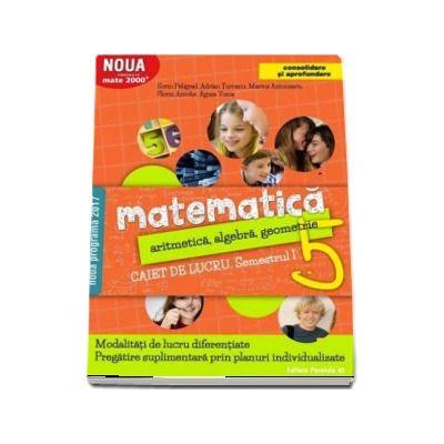 Matematica 2000. Aritmetica, algebra, geometrie. Caiet de lucru, pentru clasa a V-a. Semestrul I (Consolidare si aprofundare)