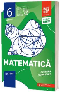 Matematica. Algebra, geometrie. Caiet de lucru. Clasa a VI-a. Initiere. Partea I (Editia a V-a)