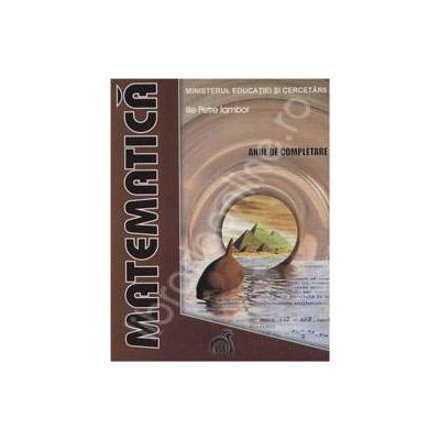 Matematica - Anul de completare (Scoala de Arte si Meserii)