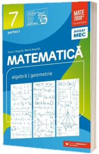 Matematica, consolidare. Culegere pentru clasa a VII-a, partea I