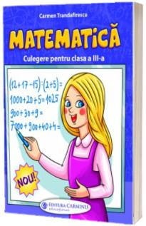 Matematica, culegere pentru clasa a III-a