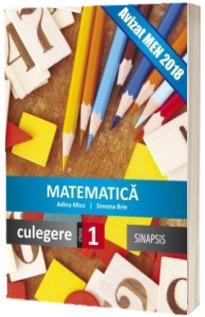 Matematica, culegere pentru clasa I