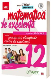 Matematica de excelenta. Pentru concursuri, olimpiade si centrele de excelenta, clasa a XII-a. Volumul I Algebra
