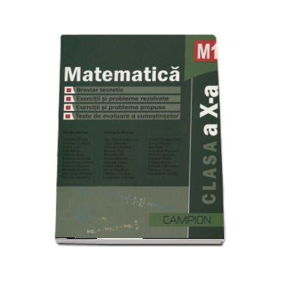 Matematica M1 clasa a X-a (Culegere de probleme) - Editie 2011