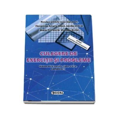 Matematica pentru clasa a VI-a. Culegere de exercitii si probleme (Semestrul I)