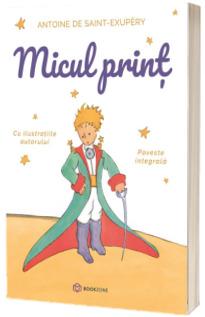 Micul Prinț, poveste integrala