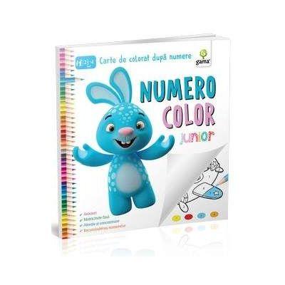 NumeroColor Junior - Carte de colorat dupa numere