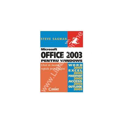 Microsoft Office 2003 pentru Windows