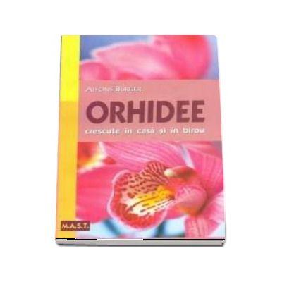 Orhidee . Crescute in casa si in birou
