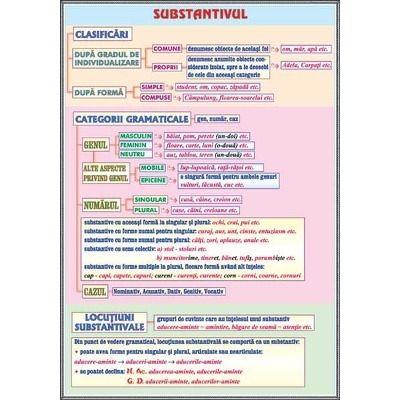 Plansa substantivul, cazurile substantivului
