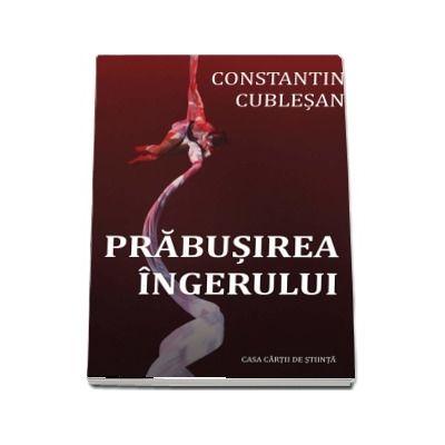 Prabusirea ingerului - Constantin Cublesan