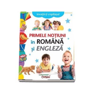 Primele notiuni in Romana si Engleza
