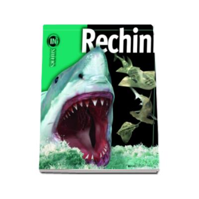 Rechini. Enciclopedie - Insiders