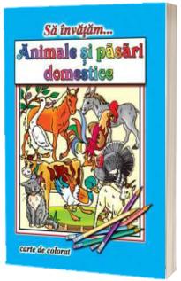 Sa invatam... Animale si pasari domestice - Carte de colorat, format A4