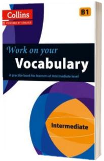 Vocabulary : B1